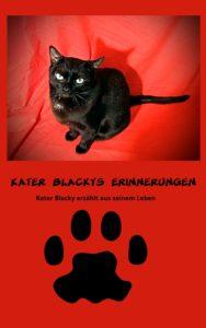 Blacky Kater, Geschichten, Katzengeschichten